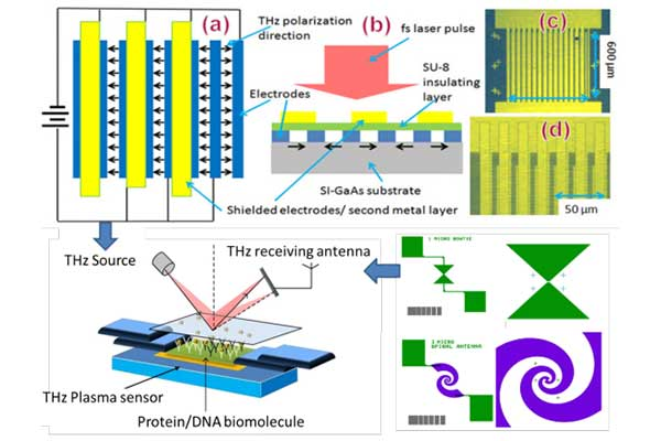 Microfluidic Chip Signal Detector